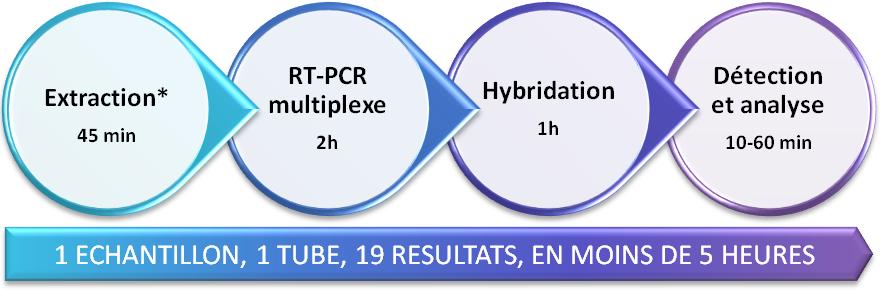 GPP Processus de traitement